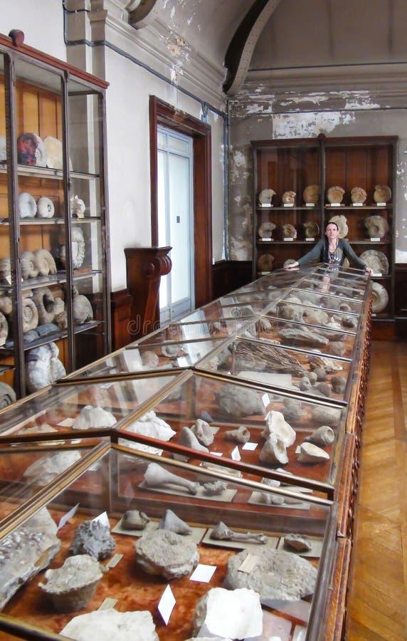 Museo parisiense de la paleontología fotos de archivo libres de regalías