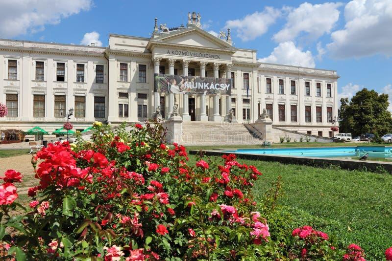Museo in Seghedino immagini stock libere da diritti