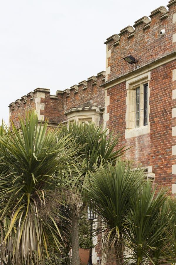 Museo y Art Gallery de Hastings detrás de las palmeras imagen de archivo libre de regalías