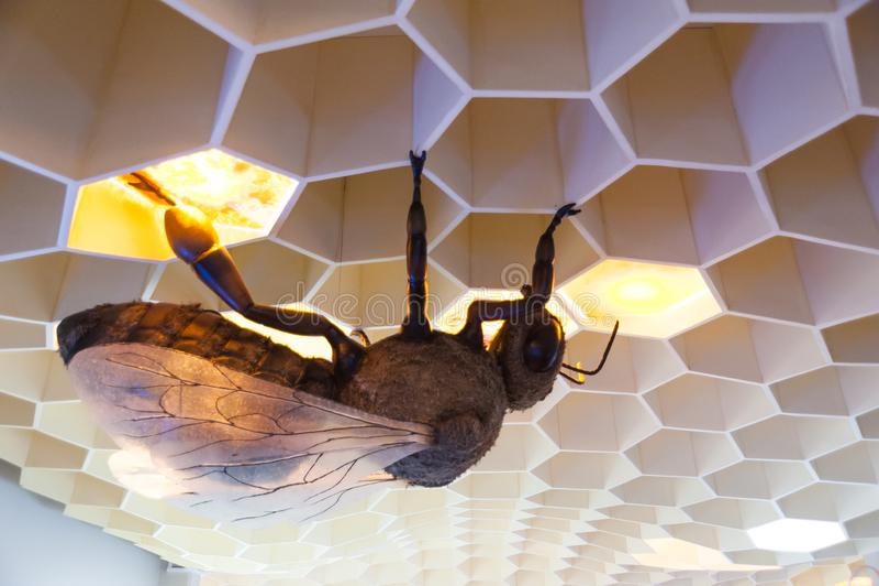 Museu da abelha na vila de Pastida Greece 30/05/2018 Exibição gigante da abelha na exposição Console do Rodes europa fotos de stock royalty free