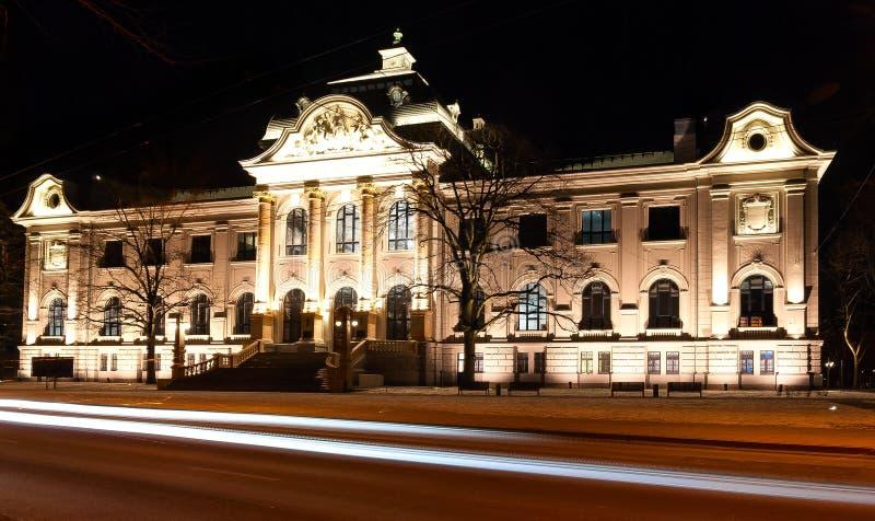 Museu de arte Riga fotografia de stock royalty free