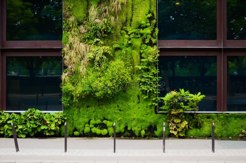 Museu de Branly em Paris, França A parede verde foto de stock