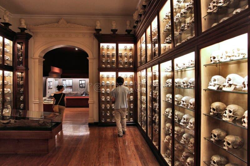 Museu de Canario fotos de stock royalty free