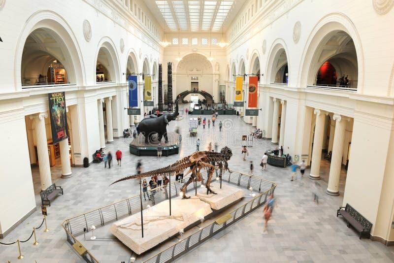 Museu do campo em Chicago fotos de stock royalty free
