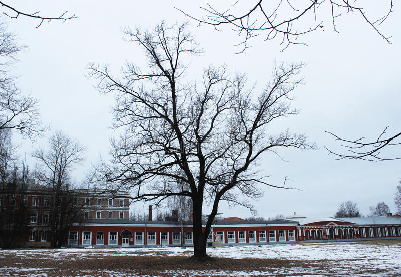 Museu do marco da história do motor da aviação e o reparo e a árvore em Gatchina fotografia de stock