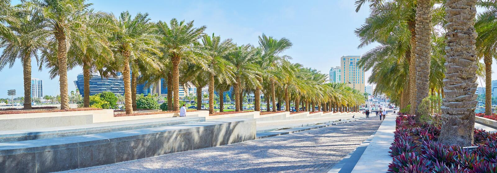 Museum Park, Doha, Qatar. DOHA, QATAR - FEBRUARY 13, 2018: Panorama of hilly Museum park with long rows of shady palms and narrow fountain in the middle, on royalty free stock photography