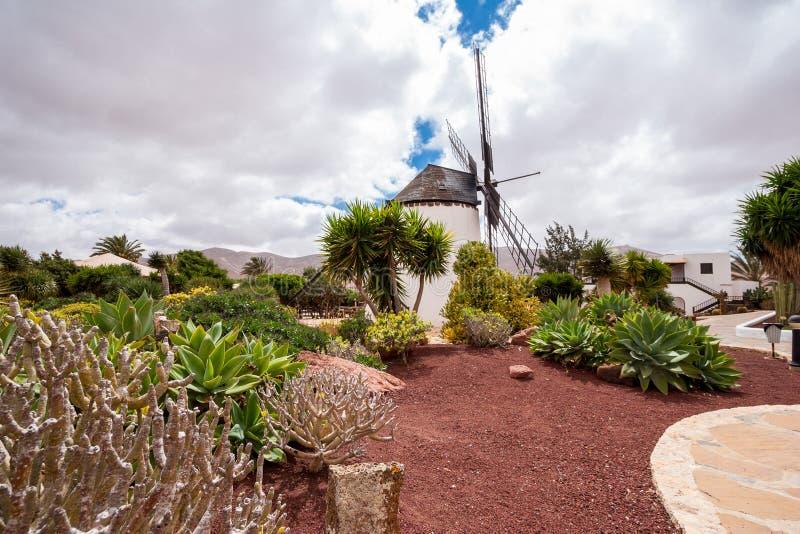 Museumswindmühle Antigua Fuerteventura, Kanarische Inseln, Spanien lizenzfreie stockfotos