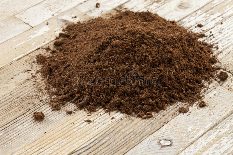 Musgo de turfa canadense do sphagnum foto de stock
