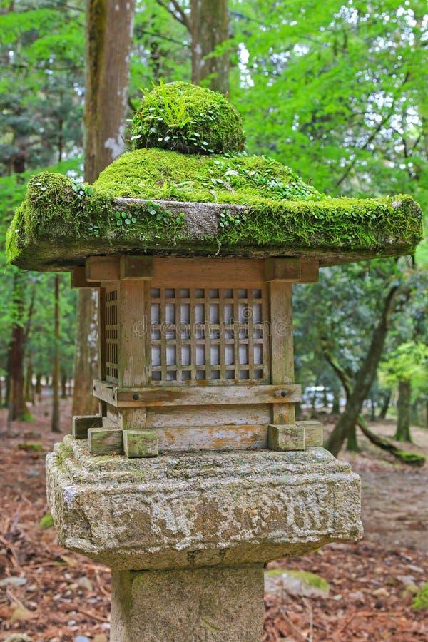 Musgo y helecho que crecen en las linternas de piedra en Nara, Japón foto de archivo