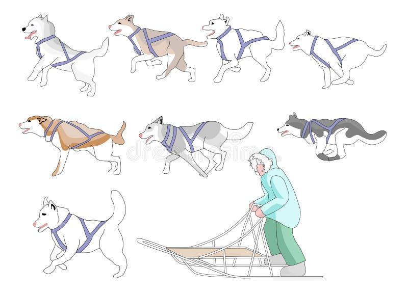 Musher y emparejamiento de la mezcla n de los perros ilustración del vector