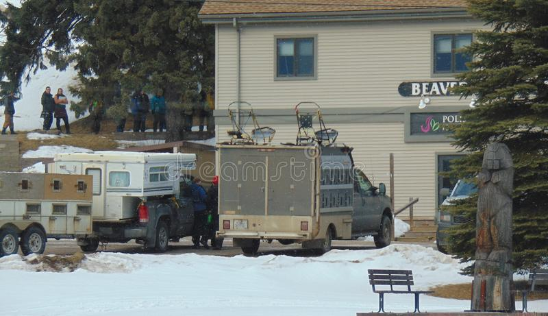 Mushers, gli operatori ed i funzionari si riuniscono nella baia Minnesota del castoro per la riunione del controllo e di corsa de immagine stock libera da diritti