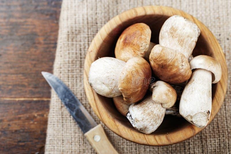 Mushroom Boletus on burlap stock images