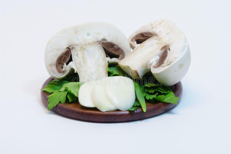Mushroom champignon stock photo