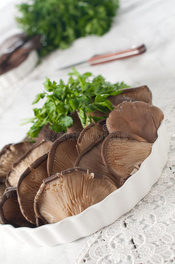 Mushroom for cooking
