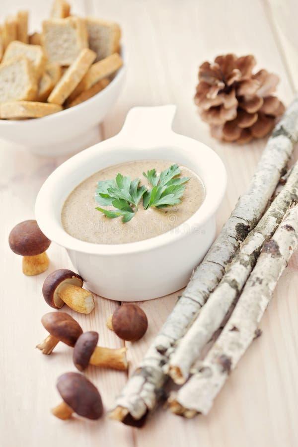 Mushroom cream. Bowl of delicious mushroom cream - food and drink /selective focus stock images