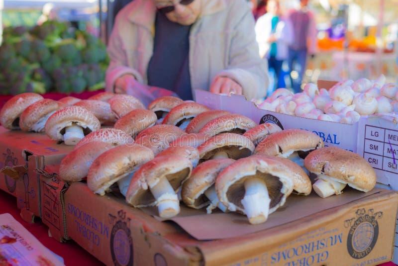 Mushroom in Farmers` market royalty free stock photos