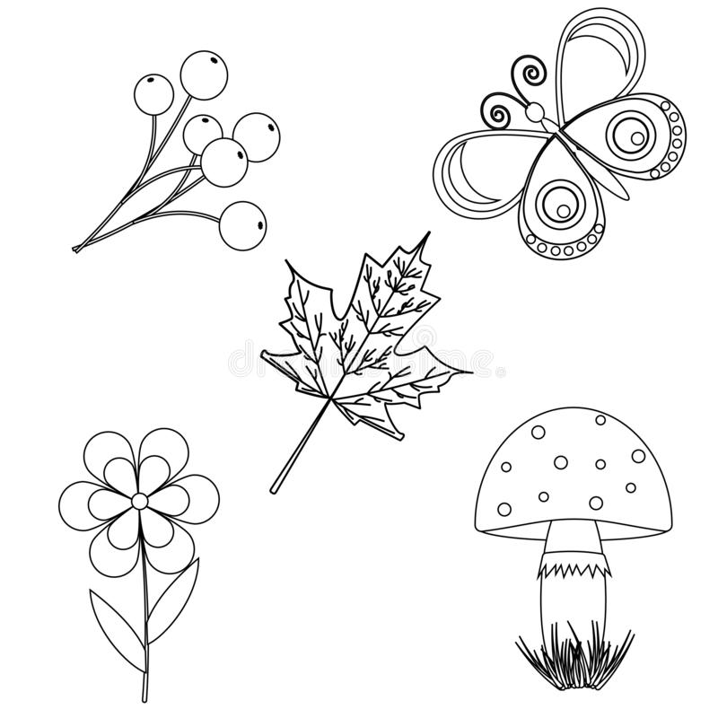 Snail In The Nature Coloring Page - Free Printable Coloring Pages ... | 800x800