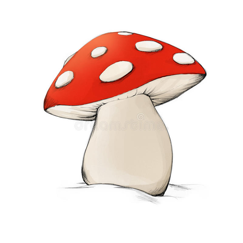 mushroom stock illustration illustration of draw autumn