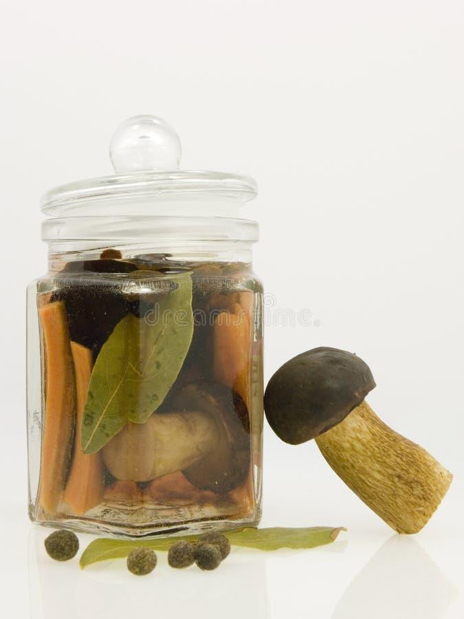 Free Mushroom In The Jar Stock Photography - 3187432