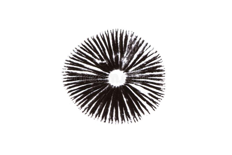 A mushroom leaves a black spore print. On a white background stock photography