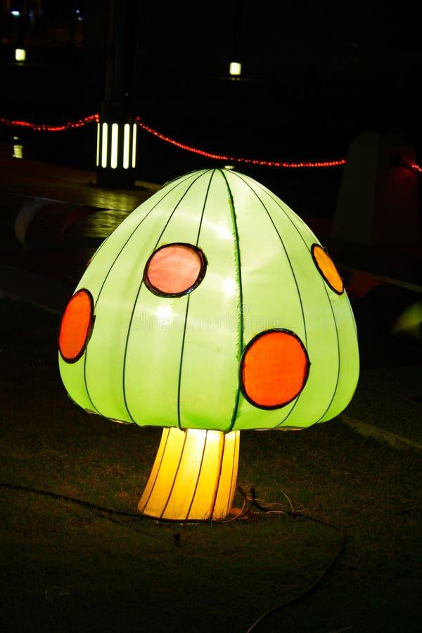 Download Mushroom of light at night stock photo. Image of vegetable - 16552326