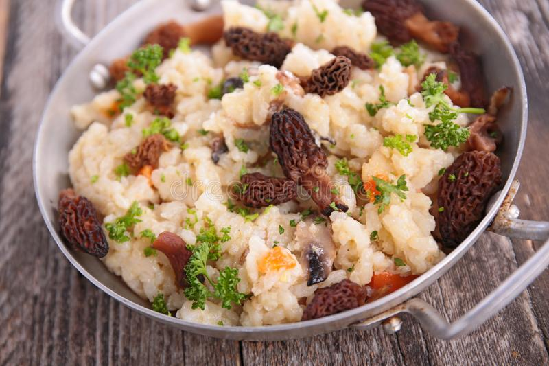 Mushroom risotto and herbs royalty free stock photos