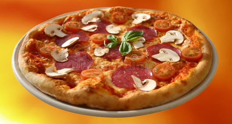 Mushroom Salami Pizza royalty free stock photos