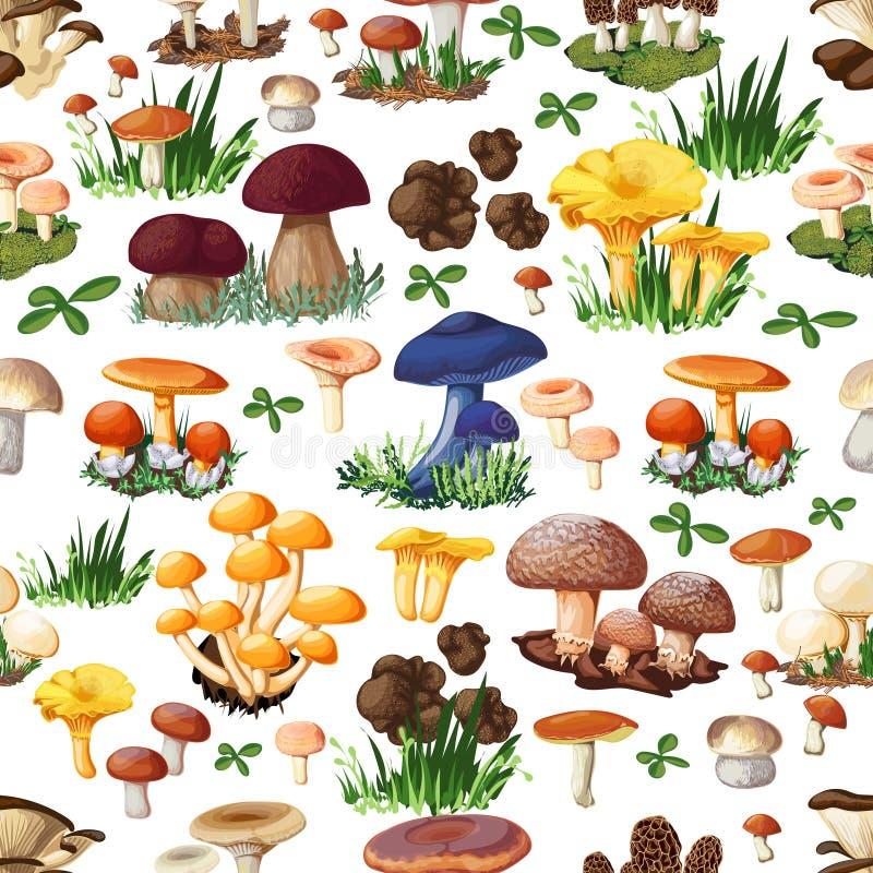 Mushroom Seamless Pattern vector illustration