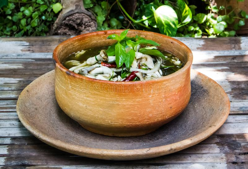 Mushroom soup. Mushroom spicy soup in earthen bowl stock photos