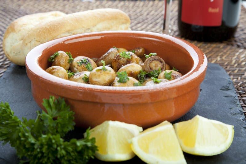 Mushroom Tapas stock photo