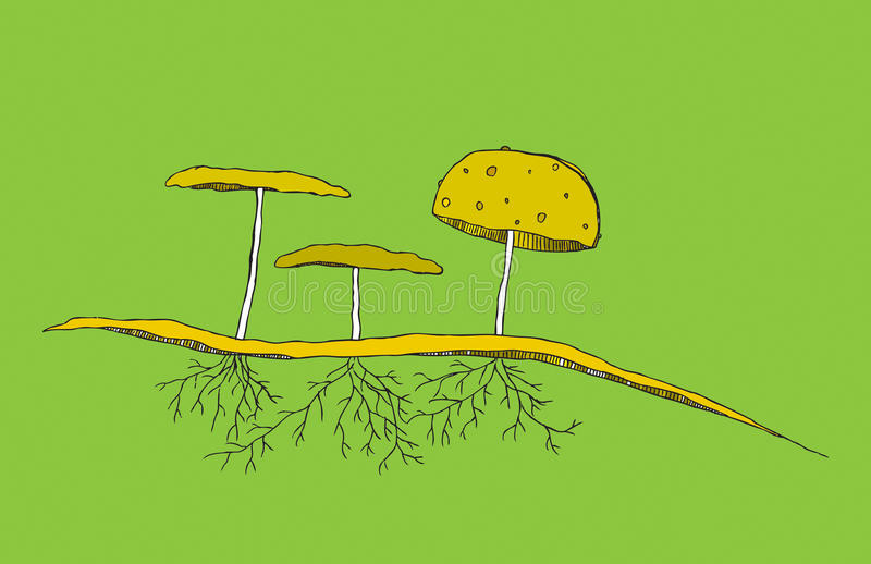 Mushroom trio with roots and soil royalty free stock image