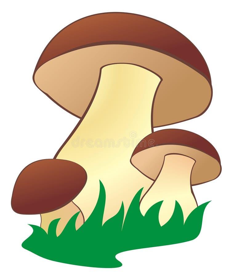 Free Mushroom2 Royalty Free Stock Photos - 11118748