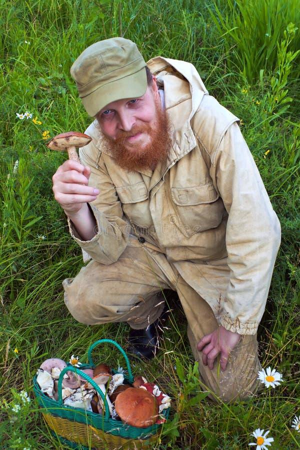 Mushroomer. Imagenes de archivo