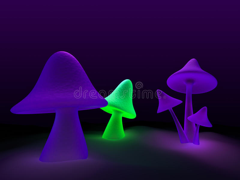 Mushrooms vector illustration