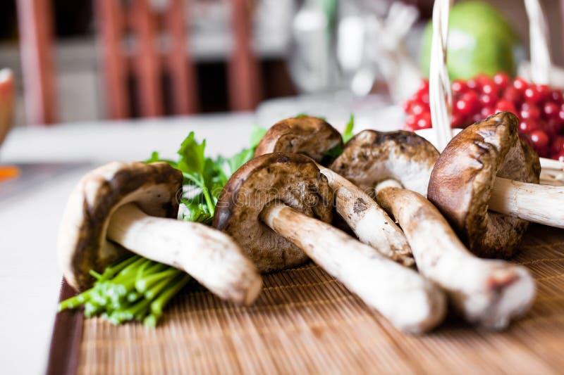 Download Mushrooms stock photo. Image of fungi, edible, board - 25240648