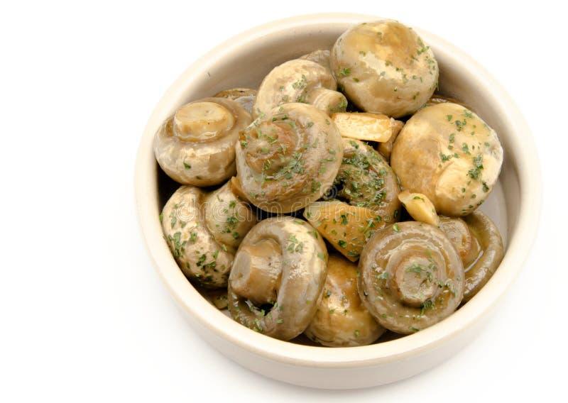 Download Mushrooms stock image. Image of mushroom, sauce, garlic - 26648087