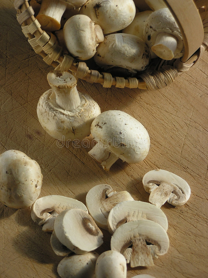 Mushrooms in basket royalty free stock image
