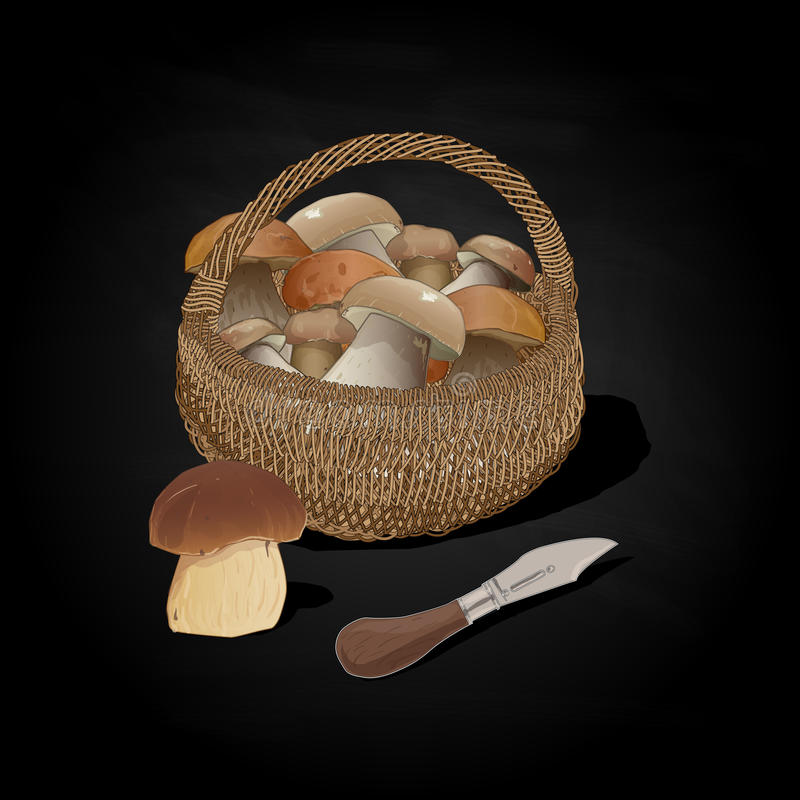 Mushrooms in the basket. Vector illustration. Isolated royalty free illustration