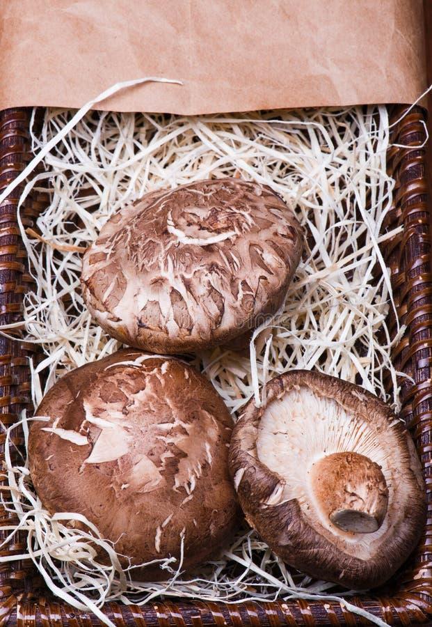 Mushrooms in brown basket stock image
