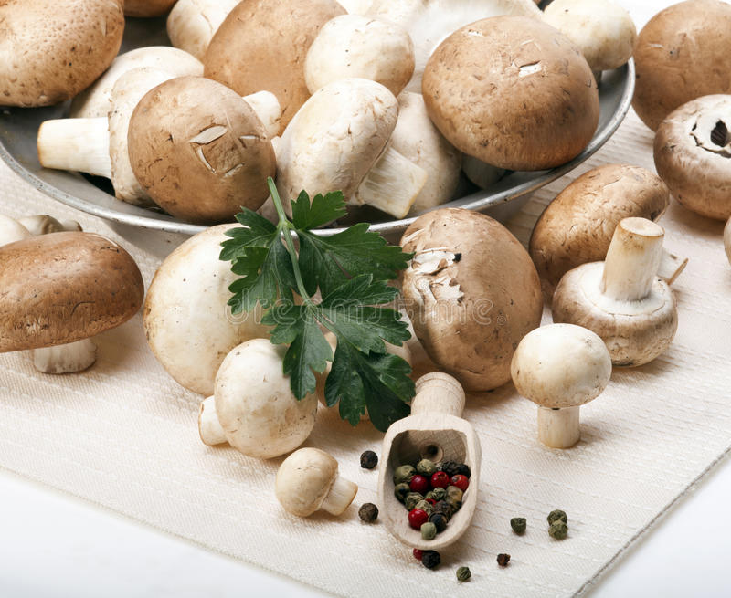 Mushrooms. Button or Champignon and Portabello mushrooms in old metal plate with parsley and mixed pepper beans on a white tablecloth royalty free stock photo