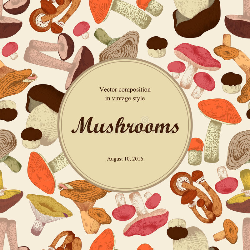 Mushrooms. Engraving. Round frame. Vector illustration with mushrooms. Colorful labels with mushrooms. Klassichemkaya frame for culinary directory royalty free illustration