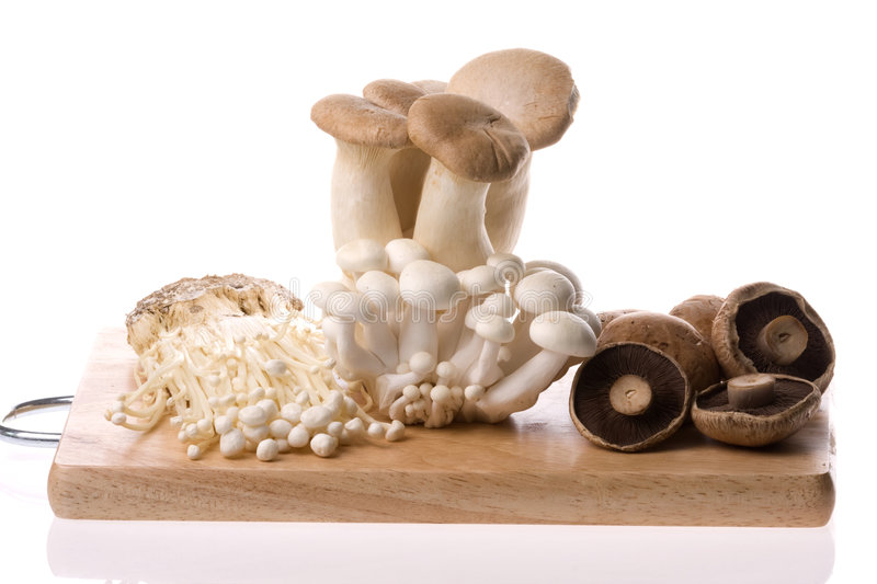 Download Mushrooms Isolated stock photo. Image of fresh, cooking - 6328386