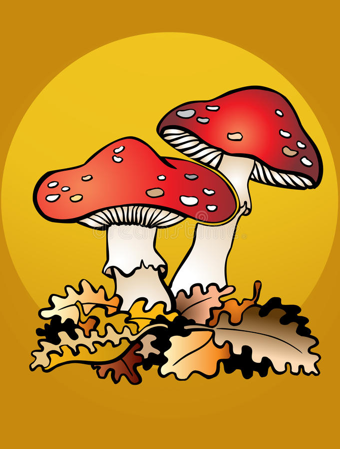 Download Mushrooms and leafs stock vector. Image of toadstool - 19968793