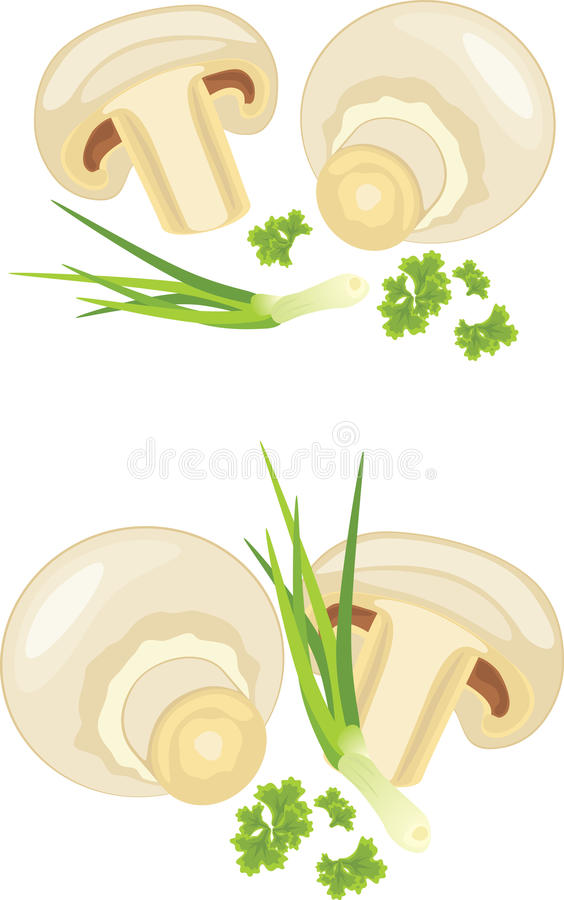 Download Mushrooms With Parsley And Chives Isolated On The Stock Vector - Illustration of objects, champignon: 39504934