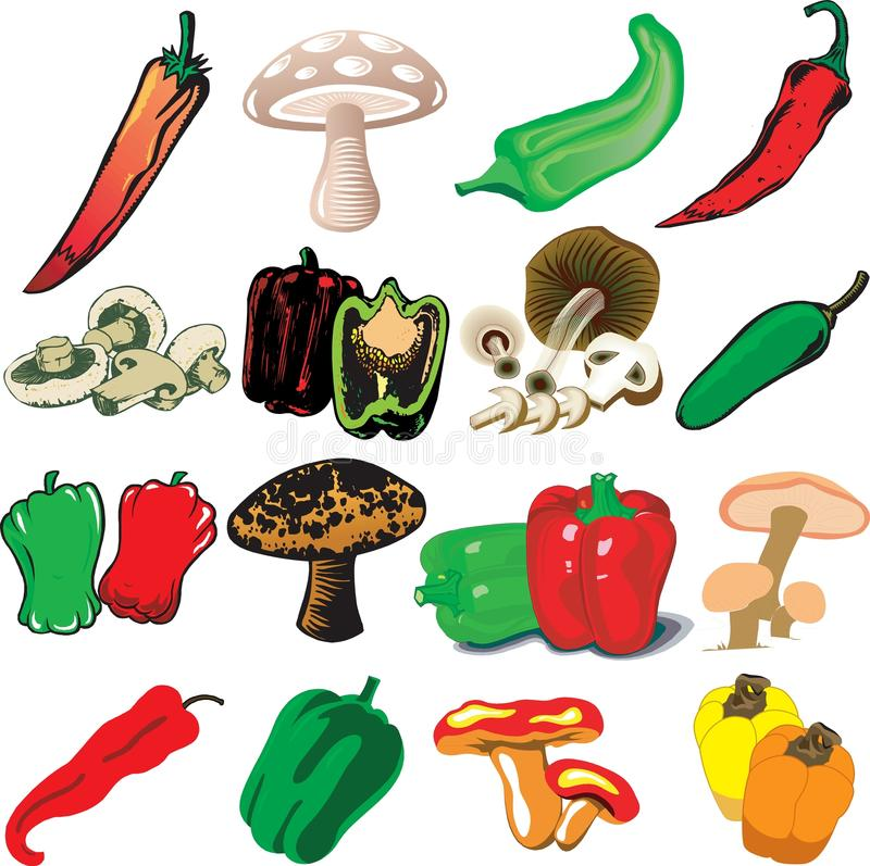 Download Mushrooms and Peppers stock illustration. Image of icons - 16060522