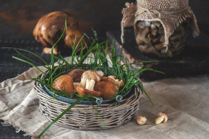 Mushrooms pickled in a jar on a rustic background, autumn, canned food cooking jars with pickled mushrooms on wooden background. T royalty free stock photos