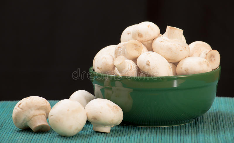 Mushrooms in a plate. Close up of fresh white mushrooms in a plate stock photos