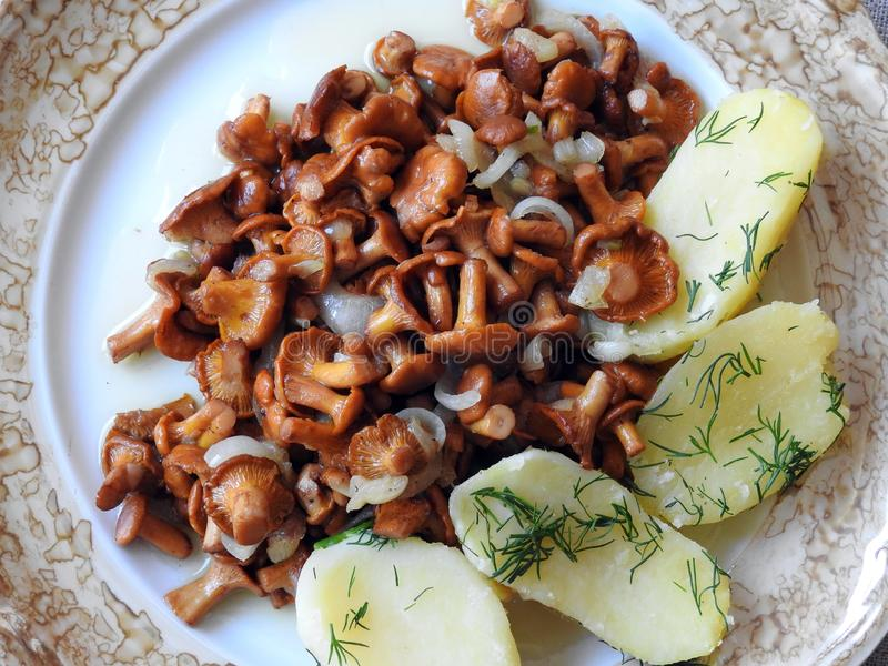 Mushrooms and potatoes in plate, Lithuania stock photography
