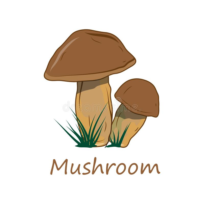 Mushrooms. Raw Mushrooms. Forest Food. Fresh Mushrooms for Raw Food Diet. Fresh Natural Vegan Product. Plant Food. Healthy Food. stock illustration