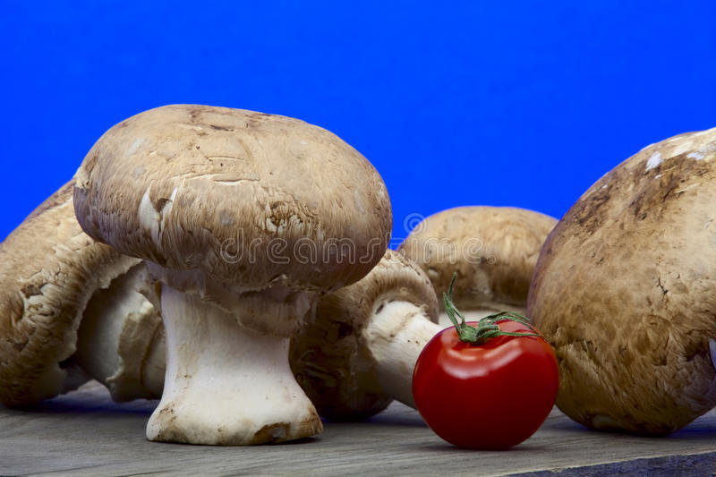 Mushrooms and a tomato stock image